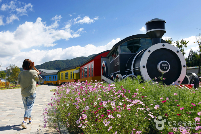 Steam Engine Train and Rail Bike along Seomjingang River