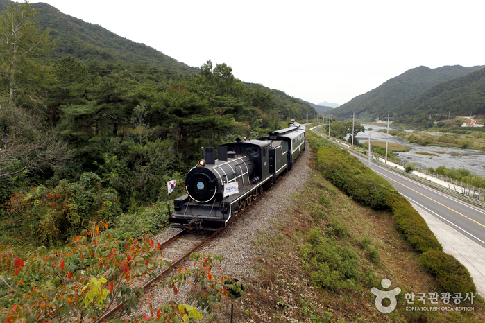Steam Engine Train and Rail Bike along Seomjingang River_1
